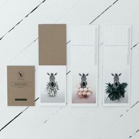 Zebra Postcard Pack