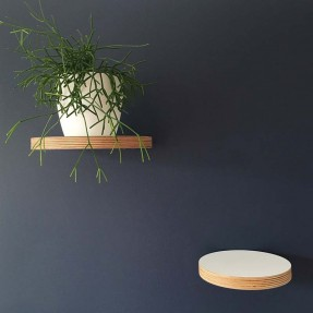 Round Floating Shelves in white