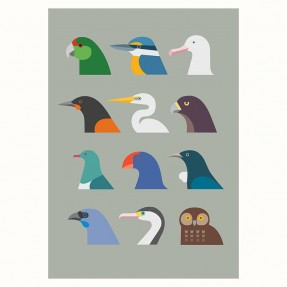 Birds of New Zealand by Hamish Thompsen