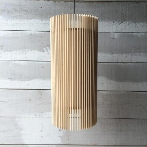 iO Pendant Medium Lamp
