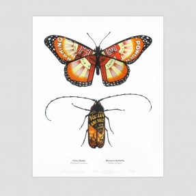 Monarch Butterfly and Huhu Beetle Art Print