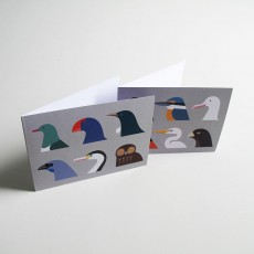 Birds of New Zealand - Set of Cards