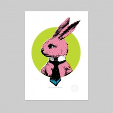 A Very Smart Pink Bunny