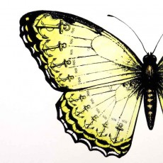Anchor Butterfly Art Print