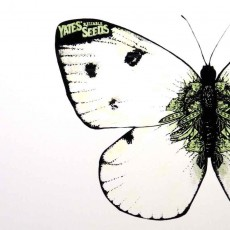 Yates White Butterfly Screen Print