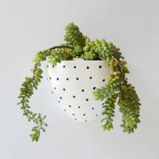 Wall Planter White/Full Black Dots